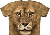 Можно ли совершать намаз в одежде с изображением животных?