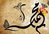 Рецепт здоровых волос от Посланника Аллаха (мир ему)