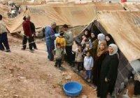 Иракские беженцы хотят уехать из Европы на родину