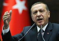 Эрдоган заявил, что теракт в Стамбуле совершил сириец