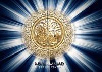 Почему плакал Пророк Мухаммад (мир ему)?