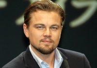 Леонардо Ди Каприо номинирован на «Оскар»