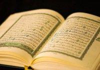 7 сур Корана, особенно выделяемые Пророком Мухаммадом (ﷺ)