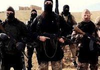 20 лет грозит двум американцам за попытку вступить в ИГ