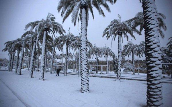Впервые за 85 лет: Саудовская Аравия под слоем снега (+ видео)