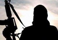 Как распознать «завербованного ИГИЛ»?