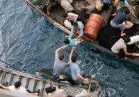 Жертвами кораблекрушений в Эгейском море стали 42 беженца