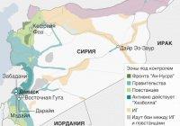 Сирия при помощи России отвоевала Латакию у ИГ