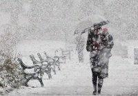 На Тайване из-за аномального холода погибли 85 человек