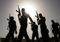10 вероятных вербовщиков ИГ задержаны в Турции
