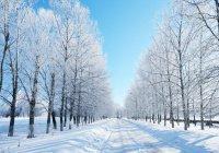 Завтра в Казани ожидается 27 градусов мороза