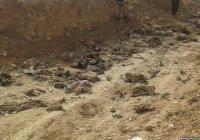 Массовое захоронение жертв ИГИЛ найдено в Эр-Рамади