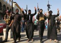 Двое членов ИГИЛ арестованы в Индии