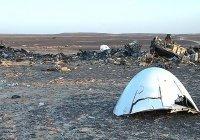 Бомбу в А321 с туристами из России пронесли грузчики