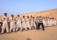 Тренировочные лагеря ИГИЛ работают в Европе – Европол