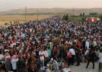 Доклад: некоторые страны уклоняются от помощи беженцам
