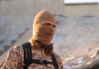 Теракты страшнее 11 сентября обещает ИГИЛ в новом видео
