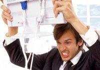 Ученые: Агрессия вырабатывает новые нервные клетки