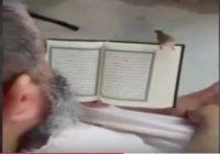Птица слушает чтение Священного Корана