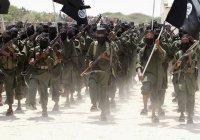 25 тысяч боевиков воюют за ИГИЛ в Сирии и Ираке