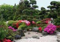 В Крыму построят уникальный ботанический сад роз