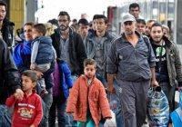 40% беженцев не получат убежища в ЕС