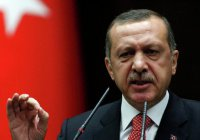 Турецкая журналистка сядет в тюрьму за оскорбление Эрдогана