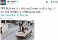 """Боевики ИГИЛ бреют медведей"": опечатка NBC рассмешила соцсети"