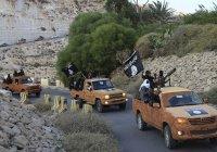Из Турции в Сирию за 1 день перебрались больше 500 боевиков