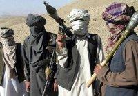 В Афганистане освобождены 5 похищенных сотрудников Красного Креста