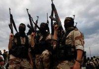 Жителя Ингушетии ждет суд за участие в ИГИЛ