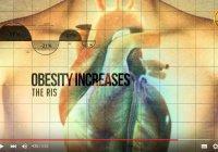 Научные факты в Коране: смертельная опасность ожирения