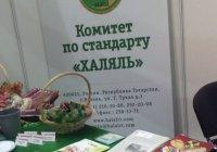 Татарстанские предприятия участвуют в форуме «Мусульманский мир»