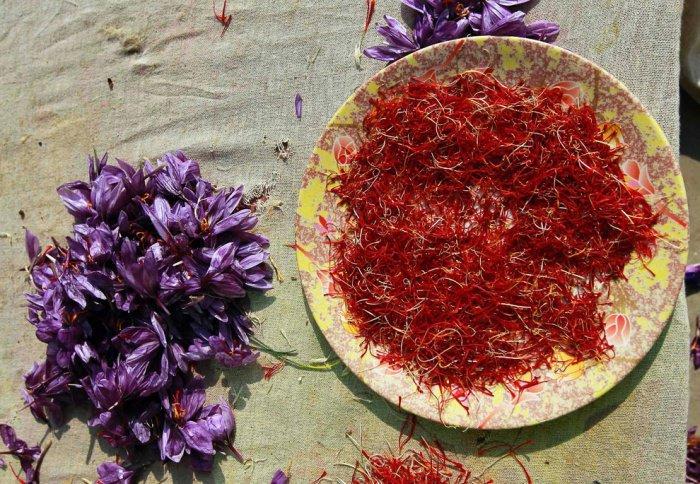 Этими цветами будет покрыта земля в Раю