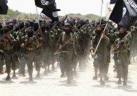 Боевики ИГИЛ впервые добровольно отказались от войны
