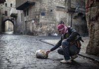 97 вооруженных сирийских группировок согласились на перемирие