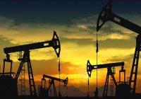 Из-за обвала цен на нефть арабские страны ждет экономический кризис