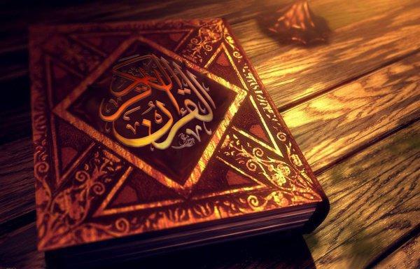 Следующий сунне находится на сират аль мустаким – пути тех, кем доволен Аллах