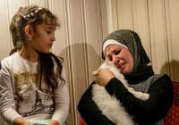 Иракский кот нашел свою семью, преодолев полмира