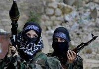 Эксперт: женский отряд ИГИЛ – показатель отчаяния террористов