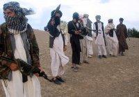 120 афганских талибов добровольно сложили оружие