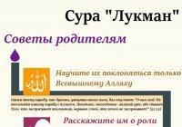 "ИНФОГРАФИКА: Сура ""Лукман"" - 4 совета родителям"
