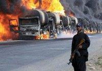 Нефтяные «трубы на колесах» превратились в «трубы на копытах»