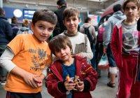 Курсы русского языка для сирийских беженцев открылись в Подмосковье
