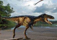 Новый предок тираннозавров обнаружен в Узбекистане