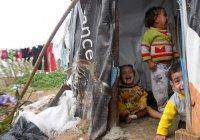 ЮНИСЕФ: треть сирийских детей не видели мирной жизни