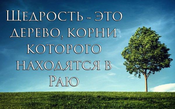 Щедрость – это дерево, корни которого находятся в Раю
