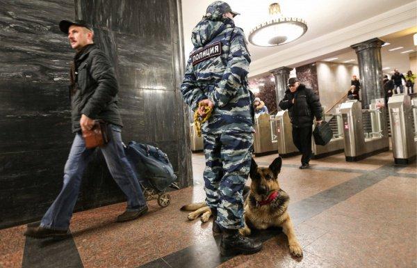 С начала 2016 года на всех объектах общественного транспорта РФ усилены меры безопасности.