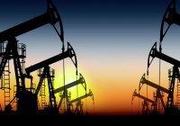Россия примет участие во встрече производителей нефти в Катаре