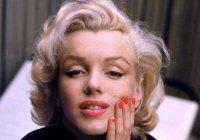Ученые опровергли популярный стереотип о блондинках